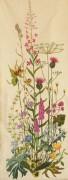 305A Borduurpatroon Kruissteken Embroidery pattern Cross-stitches Wilde bloemen
