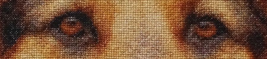 40B Borduurpatroon Kruissteken Embroidery pattern Cross-stitches Rana